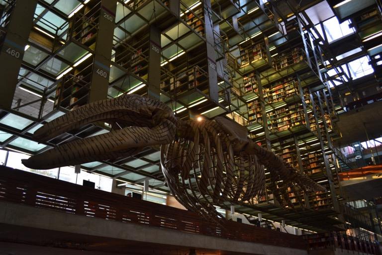 メキシコシティにある図書館 「Biblioteca Vasconcelos (バスコンセロス図書館)」に入ったら、 ミライの空気を吸い込むことができた。 1960年生まれのメキシコの建築家、 Alberto Kalach(アルベルト・カラチさん) によって設計されたこの図書館。 かっこよさを説明するのに、コトバは不要です。 さあ、ご覧ください。ミライを。